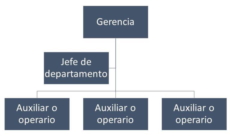 Organigrama microadministrativo